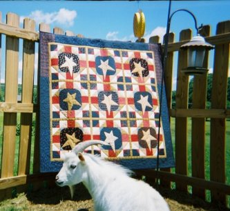 Peanut, Lily's dad is asking you to please look at Elizabeth's Old Ben's Bonnet quilt...he looks quite pleased! Elizabeth tells me that even though it's been since 2004 when she closed her shop she still remembers the stories inside the patterns. Again, t